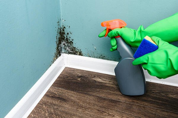 healthy house cleaning 3